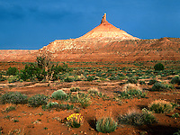 North Six-shooter Peak near the Needles Section oi Canyonlands National Park in Utah shows its best colorful dress in this early morning view