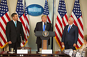 United States President Donald J. Trump makes remarks at the first meeting of the Presidential Advisory Commission on Election Integrity, flanked by the Commissions Vice Chair Chris Kobach (left) and Chairman, US Vice President Mike Pence (right) at The White House in Washington, DC, July 19, 2017.<br /> Credit: Chris Kleponis / CNP