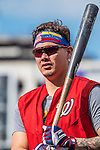 7 October 2016: Washington Nationals catcher Jose Lobaton awaits his turn in the batting cage prior to the first game of the NLDS against the Los Angeles Dodgers at Nationals Park in Washington, DC. The Dodgers edged out the Nationals 4-3 to take the opening game of their best-of-five series. Mandatory Credit: Ed Wolfstein Photo *** RAW (NEF) Image File Available ***