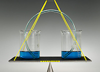 EQUILIBRIUM RESTORED BY USE OF SIPHON<br /> (Variations Available)<br /> 2 beakers of equal amounts of fluid are measured<br /> When liquid is added to one beaker, the additional liquid is siphoned through the tube and the levels are restored. The flow is determined by the difference in hydrostatic pressure. Liquid rises over the crest of the siphon due to gravitational pull.