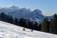 Skipiste  auf dem S&ouml;llereck bei  Oberstdorf im Allg&auml;u, Bayern, Deutschland<br /> piste on Mt.  Sellereck  near Oberstdorf, Allg&auml;u, Bavaria, Germany