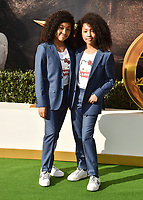 "WESTWOOD, CA - JANUARY 11: Mirabelle Beatrice Lee and Anais Lee  attends the Premiere of Universal Pictures' ""Dolittle"" at Regency Village Theatre on January 11, 2020 in Westwood, California.<br /> CAP/ROT/TM<br /> ©TM/ROT/Capital Pictures"