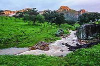 REMM Rancho Santa Barbara