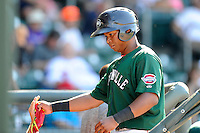Third baseman Rafael Devers (13) of the Greenville Drive is congratulated after scoring a run in a game against the Charleston RiverDogs on Sunday, June 28, 2015, at Fluor Field at the West End in Greenville, South Carolina. Devers is the No. 6 prospect of the Boston Red Sox, according to Baseball America. Charleston won, 12-9. (Tom Priddy/Four Seam Images)
