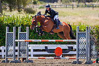 Class 27: Dunstan Horsefeeds Amateur Rider Series. 2020 NZL-Collinson Forex Premier Show Jumping At Woodhill Sands. Helensville. Sunday 12 January. Copyright Photo: Libby Law Photography