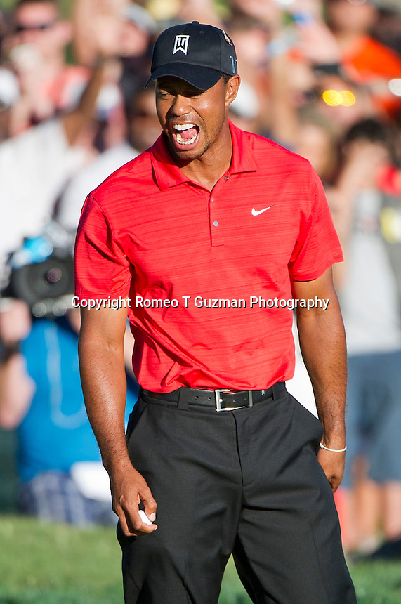 March 25, 2012: Tiger Woods reacts after sinking his putt to win his 7th  Arnold Palmer Invitational held at Arnold Palmer's Bay Hill Club & Lodge in Orlando, FL