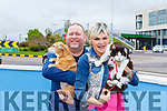 Angela Romero and RichardVillarrubia and their dog Edie with Gina the cat the found that was missing for two months