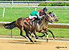 Impressive Roberto winning at Delaware Park on 6/23/15