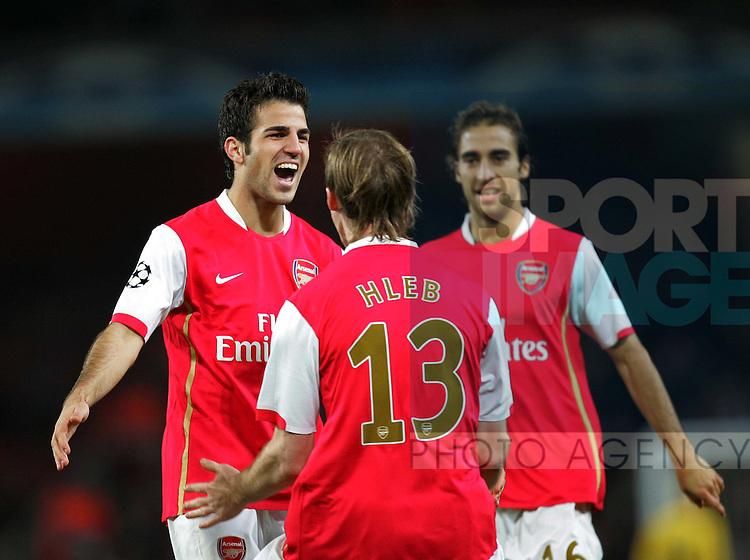 Arsenal's Cesc Fabregas celebrates with goalscorer Alexander Hleb