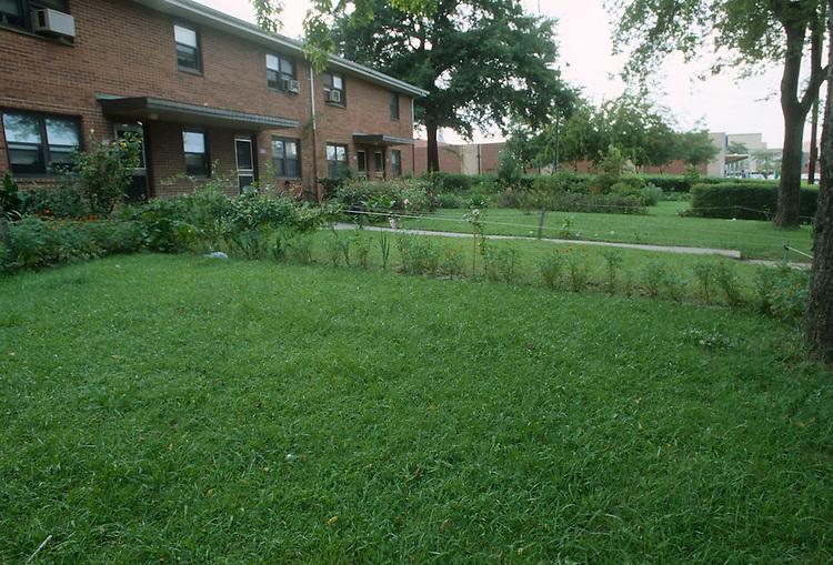 1992 September ..Assisted Housing..Tidewater Gardens (6-2 & 6-9)..YARD BEAUTIFICATION...NEG#.NRHA#..