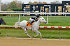Litle Bit winning at Delaware Park on 10/27/12..