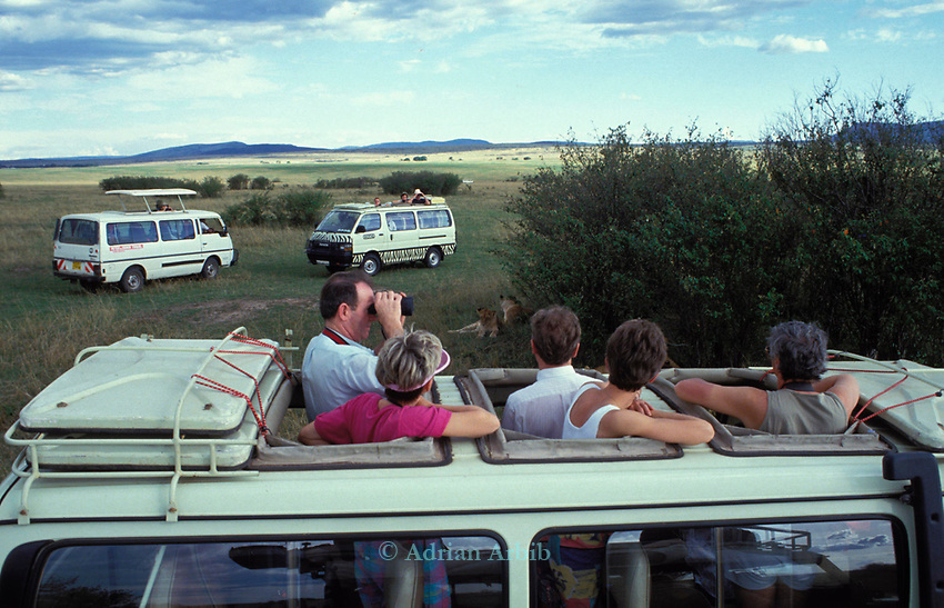 Tourists in the Maasai mara game park.  <br /> The name of the park  means Maasai blood following the wars that were fought to keep their land from the British colonizers.<br /> Now it is illegal for Maasai to enter the park to graze their animals.   <br /> Instead thousands of tourists visit the park every month<br /> bringing in valuable foreign exchange for the Kenyan government.
