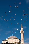 Firuz Aga Mosque Seagulls - Seagulls flying over the Firuz Aga Mosque, Sultanahmet, Istanbul, Turkey