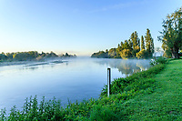 France, Cher (18), Apremont-sur-Allier, labellisé Plus Beaux Villages de France, les rives de l'Allier le matin