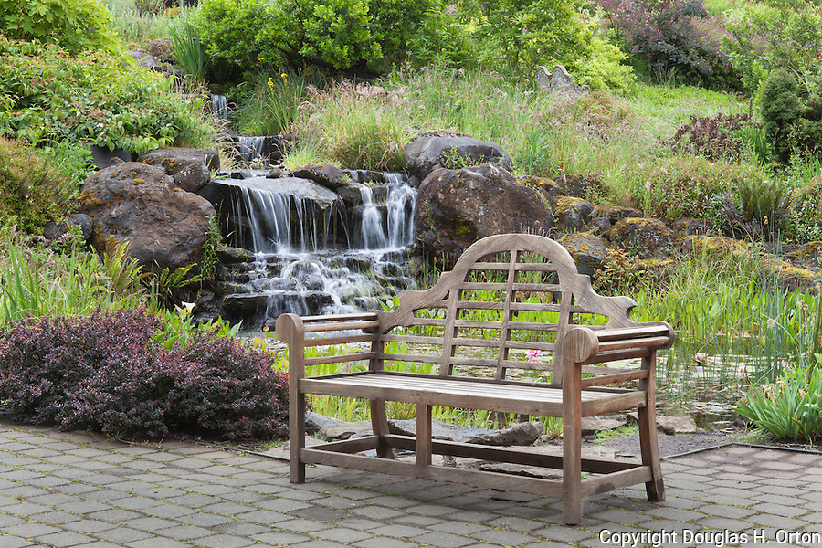 Bench by Waterfall, Oregon Gardens, Silverton, Oregon, USA | Douglas ...