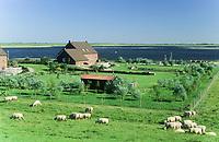 Leyhörn an der Leybucht, Blick vom Deich auf das Speicherbecken und Leysiel, Niedersachsen
