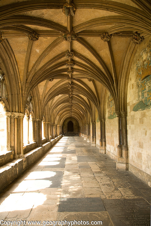 Norwich cathedral cloisters, Norwich, Norfolk, England