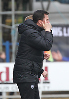 Partick Thistle Manager Gary Caldwell issues instructions in the SPFL Ladbrokes Championship football match between Queen of the South and Partick Thistle at Palmerston Park, Dumfries on  4.5.19.