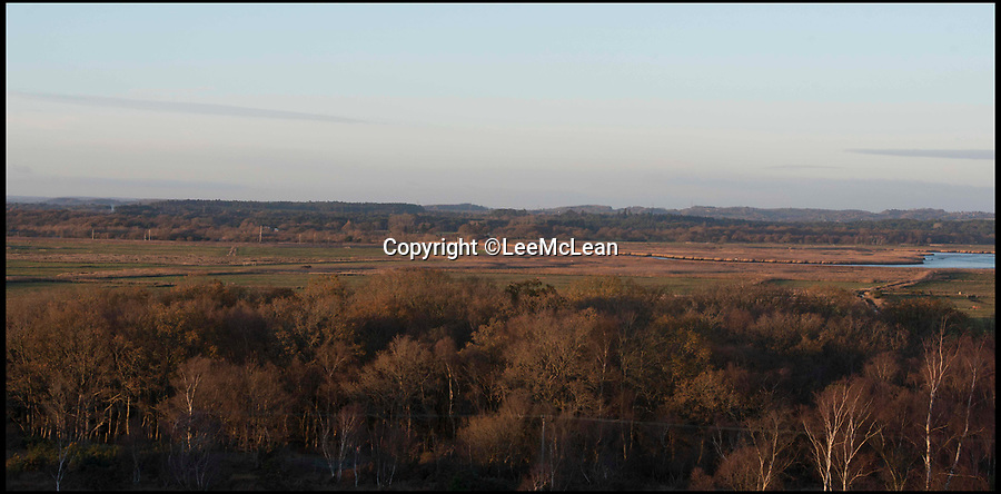 BNPS.co.uk (01202 558833)Pic: LeeMcLean/BNPS<br /> Arne Moor, Dorset. The proposed flood area.<br /> <br /> Plans to flood an area of grassland in a nature reserve in a bid to protect wading birds and their habitats from being lost have been unveiled.<br /> <br /> The RSPB (Royal Society for the Protection of Birds) has teamed up with the Environment Agency and Natural England on plans to create a new inter-tidal habitat at Arne Moors near Poole Harbour, Dorset.<br /> <br /> But residents near the proposed site say the plans would put them at risk of flooding from run-off rainwater and feel the agencies are putting wading birds above people.<br /> <br /> They also raised concerns that their community is being sacrificed for the sake of wealthy residents in Poole and the exclusive resort of Sandbanks.