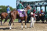 September 07, 2015. Fillies and mares including Cinderella's Mind (#10) are loaded into the starting gate before race 6, a one mile, 70 yard allowance race  on Labor Day at  Parx Racing in Bensalem, PA.  (Joan Fairman Kanes/ESW/CSM)