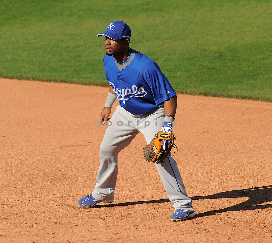 ALBERTO CALLASPO, of the Kansas City Royals, in action during the Royals game against the Texas Ranger on February 23, 2009 in Surprise, Arizona. The Rangers beat Royals 15-3