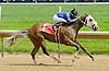 Golden Phoenix winning at Delaware Park on 5/16/12