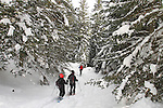 Excursio amb raquetes de neu a lles, Cap de Rec, familiar. Gener 2015