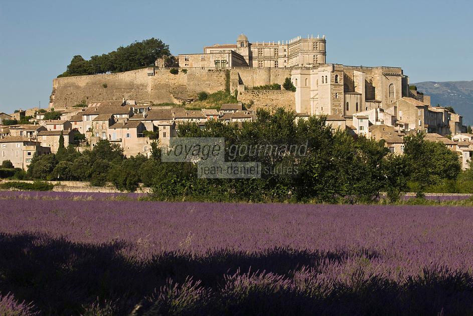 Europe/France/Rhône-Alpes/26/Drôme/Grignan: Champ de lavande, la ville et le château