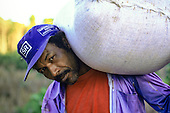 "Juruena, Amazon, Brazil. Settler carrying a large sack on his shoulder, wearing a blue ""Supermercado Ranzan"" cap."