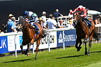 during Whitsbury Manor Stud Bibury Cup Day Racing at Salisbury Racecourse on 27th June 2018
