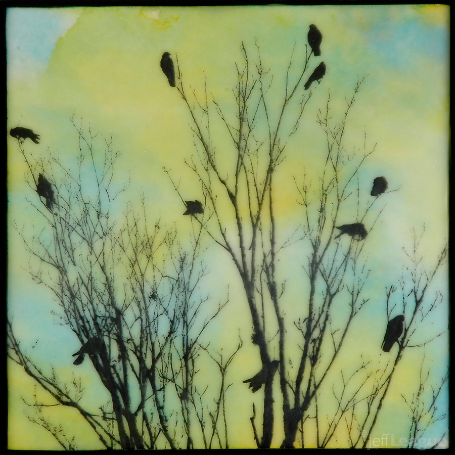 Encaustic painting in blues and greens with photo transfer of birds in branches