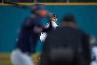 Coastal Carolina Chanticleers relief pitcher Josh Jarman (32) in action against the Illinois Fighting Illini at Springs Brooks Stadium on February 22, 2020 in Conway, South Carolina. The Fighting Illini defeated the Chanticleers 5-2. (Brian Westerholt/Four Seam Images)