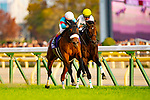 FUCHU,JAPAN-NOVEMBER 25: Almond Eye #1,ridden by Christophe Lemaire,wins the Japan Cup at Tokyo Racecourse on November 25,2018 in Fuchu,Tokyo,Japan (Photo by Kaz Ishida/Eclipse Sportswire/Getty Images)