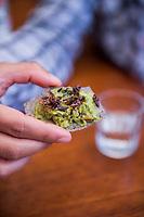 Chapulines (grasshoppers) and guacamole. Restaurant Los Danzantes, Oaxaca,  Oaxaca
