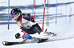 2016 USSA Northern Division Ski Races