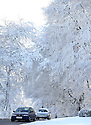 Motorists pass snow covered trees near Dundrod, County Antrim, Northern Ireland, Thursday Jan 29th, 2015. A 130 schools where forced to close due to the weather along with bus services. Photo/Paul McErlane