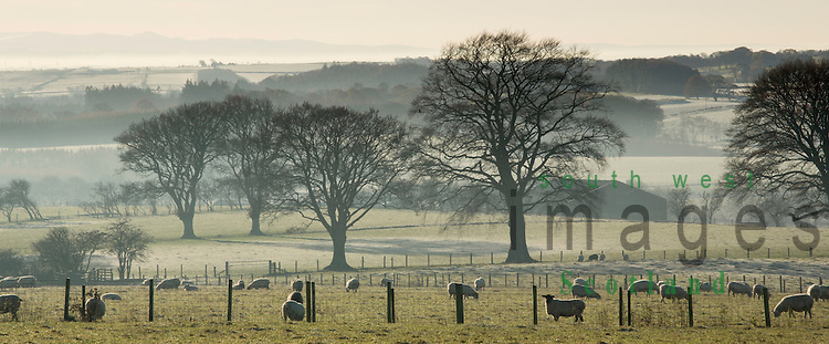 A misty Novermber at Mainshill above Lockerbie, looking down Annandale to the Solway Firth and Lake District