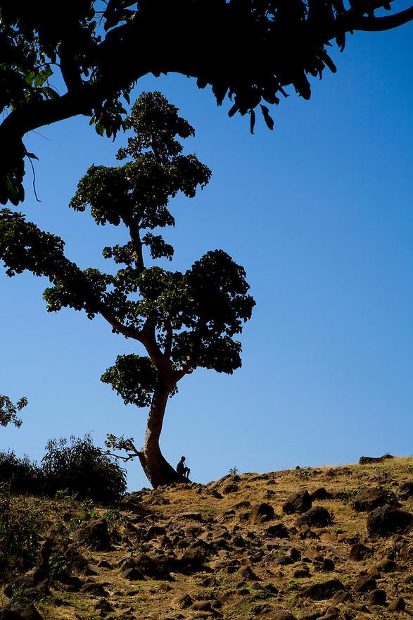 Bahir Dar and Lake Tana, Ethiopia on  November 27, 2008. Photo by Jasmin Shah.