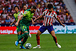 Joao Felix of Atletico de Madrid and Anaitz Arbilla of SD Eibar in action during La Liga match between Atletico de Madrid and SD Eibar at Wanda Metropolitano Stadium in Madrid, Spain.September 01, 2019. (ALTERPHOTOS/A. Perez Meca)