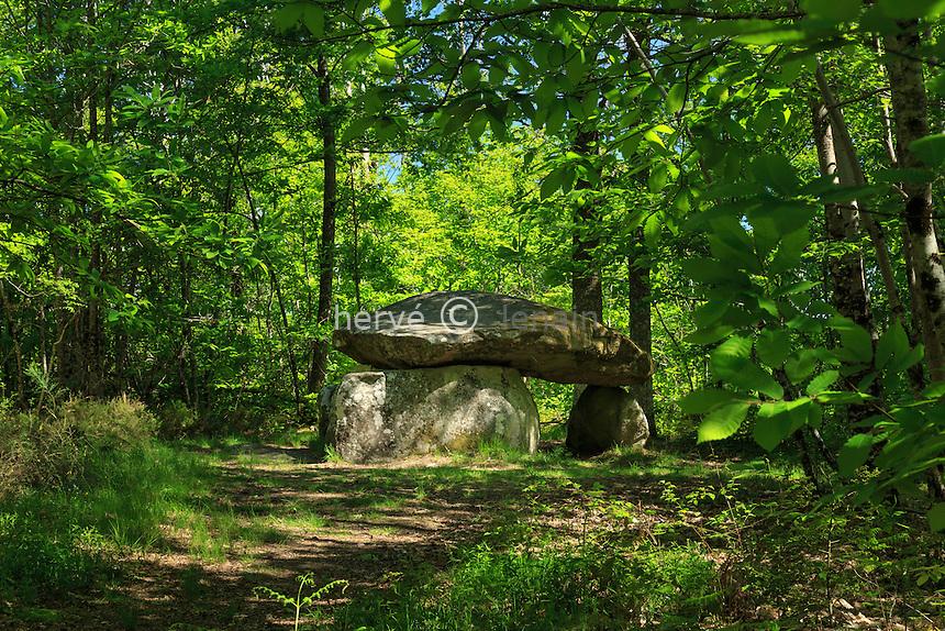France, Haute-Vienne (87),  Mailhac-sur-Benaize, dolmen de Bouéry // France, Haute Vienne, Mailhac-sur-Benaize, dolmen of Bouery