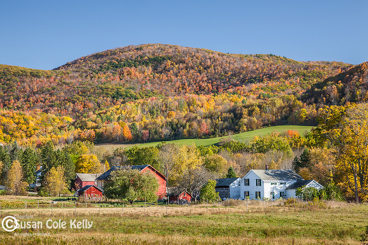 Autumn farm country, Pawlet, VT, USA
