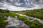 St Croix Stream, Masardis, Aroostook County, ME, USA