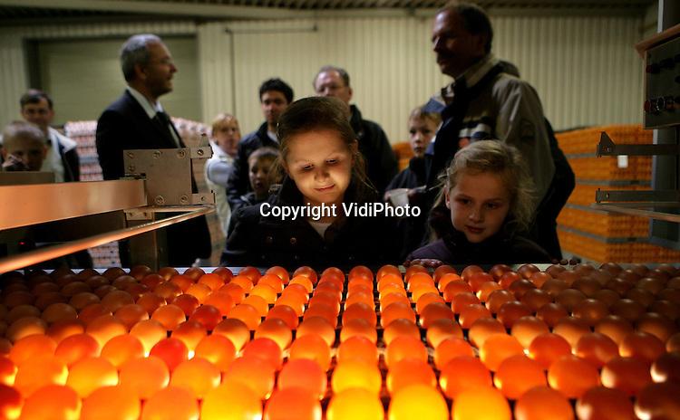Foto: VidiPhoto..BARNEVELD - In het kader van Wereld Eidag stond het eierdorp van Nederland, Barneveld, zaterdag de hele dag in het teken van kuikens, kippen en eieren. Tal van activiteiten werden voor de duizenden bezoekers uit het hele land georganiseerd in het Pluimveemuseum en in het centrum van het dorp. Het eipakstation Eicom hield open huis.