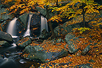 Trap Falls<br />