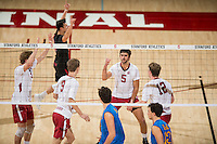 Stanford, CA, February 9, 2017<br /> Stanford Men's Volleyball vs. University of Callifornia Los Angeles in Maples Pavilion. Stanford upset UCLA to win 3-2.