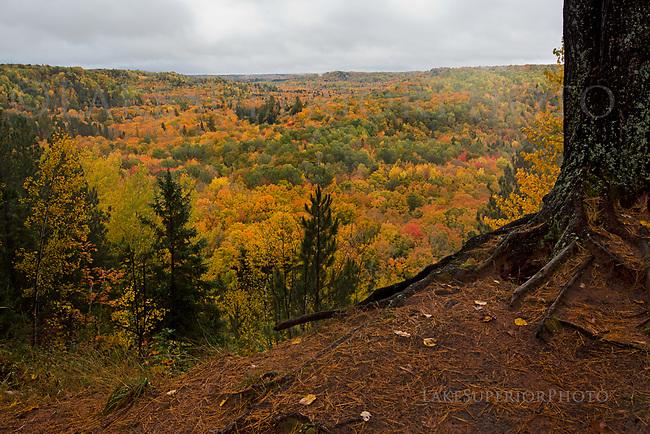 Sturgeon Gorge overlook, Autumn