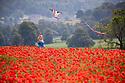 23/06/19<br /> <br /> With Chatsworth House as a backdrop, Freya Kirkpatrick flies a kite over a field of poppies near Baslow in the Derbyshire Peak District.<br /> <br /> All Rights Reserved: F Stop Press Ltd. +44(0)1335 418365   +44 (0)7765 242650 www.fstoppress.com