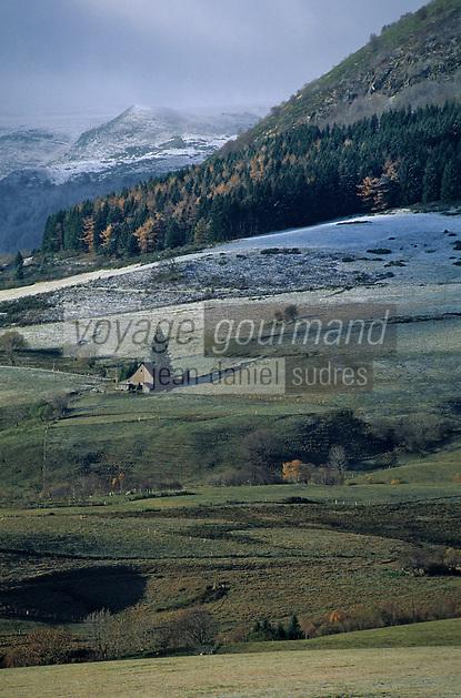 Europe/France/Auvergne/63/Puy-de-Dôme/Parc Régional des Volcans/Les Monts Dores: Environs de la Croix Morand