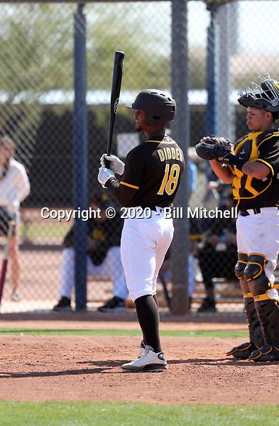 Ray-Patrick Didder - San Diego Padres 2020 spring training (Bill Mitchell)