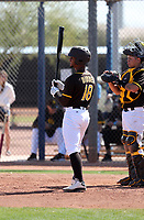 Ray-Patrick Didder - San Diego Padres 2020 spring training (Bill Mitchell)